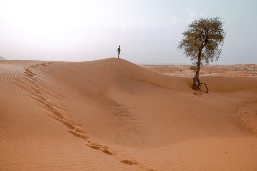a man walks in a dry desert