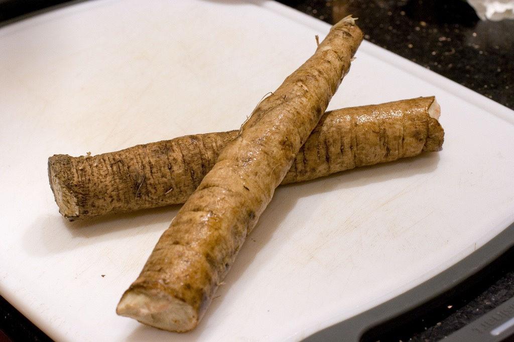 two burdock roots
