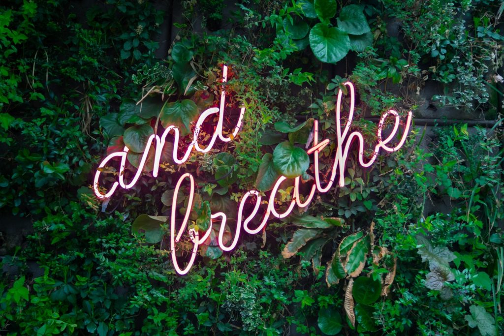 "a neon sign says ""just breathe"" on a leave covered wall"