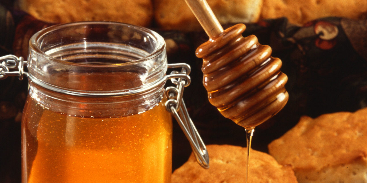 Why You Should Consider the Benefits of Honey for Hair